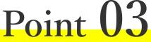 icon-point3